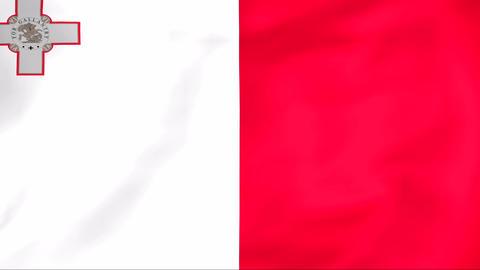 Flag Of Malta Stock Video Footage
