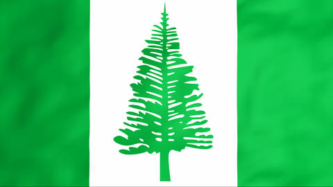 Flag Of Norfolk Stock Video Footage