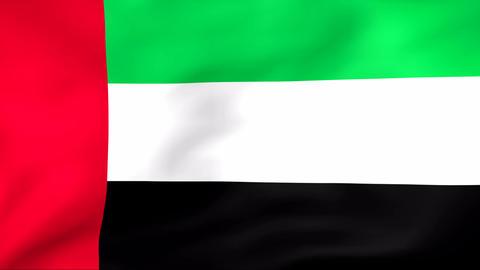Flag Of United Arab Emirates Stock Video Footage