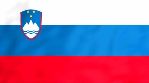 Flag Of Slovenija Stock Video Footage