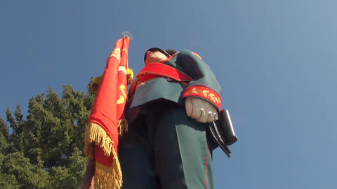 Soldier with a banner Stock Video Footage