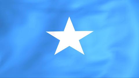 Flag Of Somalia Stock Video Footage
