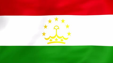 Flag Of Tajikistan Stock Video Footage