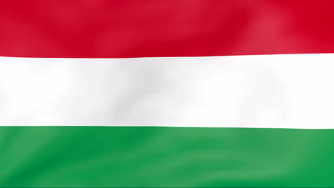 Flag Of Hungary Stock Video Footage