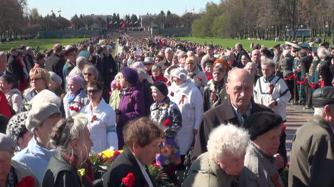 Veterans with flowers Stock Video Footage