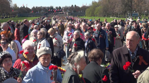 Veterans with flowers Footage