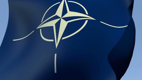 Flag of NATO (North Atlantic Treaty Organization) Stock Video Footage