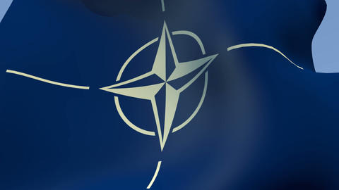 Flag of NATO (North Atlantic Treaty Organization) Stock Video Footage