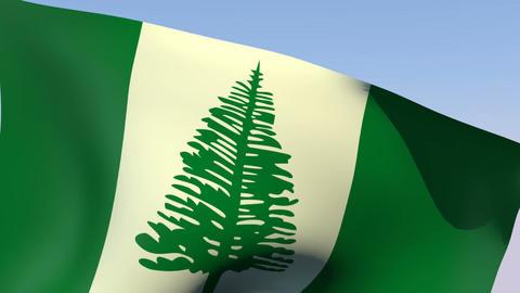 Flag of Norfolk Island Stock Video Footage