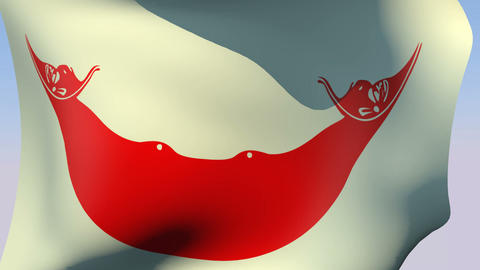 Flag of Rapa Nui, Chile Animation