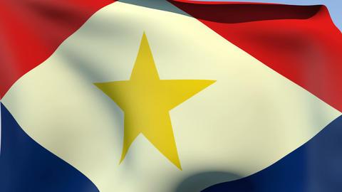 Flag of Saba Stock Video Footage