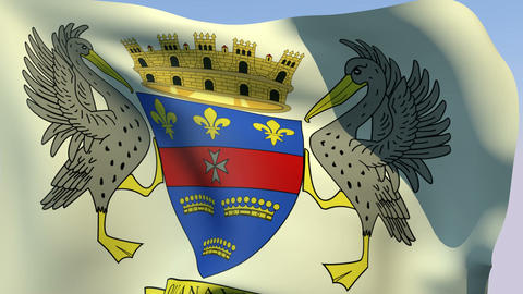 Flag of Saint Barthelemy (unofficial) Stock Video Footage