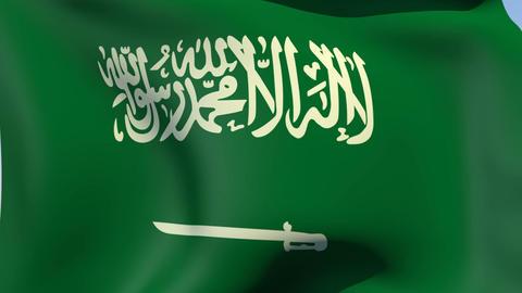 Flag of Saudi Arabia Stock Video Footage