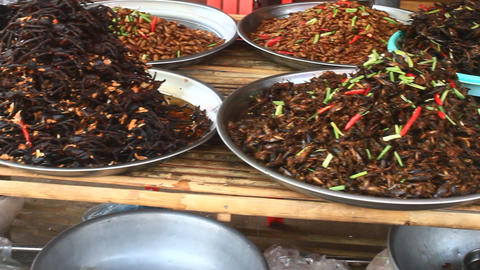Market sales insects, Cambodia Footage