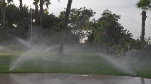 Slow motion of working irrigation sprinklers on a green lawn Live Action