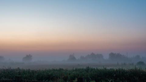 Dawn in a foggy field Footage