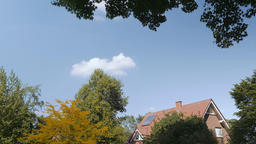 Sky, Trees, and House in Summer Weather Archivo