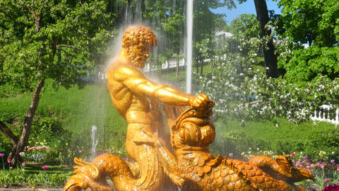 Fountains of Peterhof. Russia Live Action