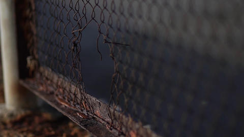 The fence mesh is covered with rust. Corrosion of metal Live Action