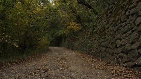 Pathway along old stone hedge in the park ビデオ