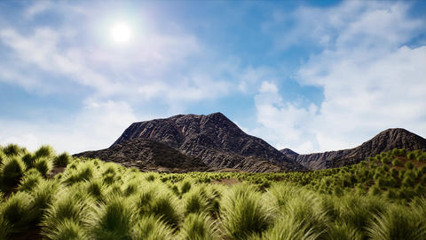 4K Rocky Geological Formations and Shrublands Arid Landscape 3D Animation Animation