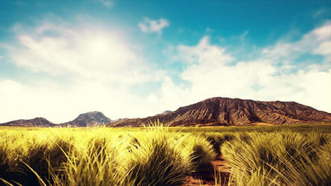 4K Static Shot of Semidesert Shurblands and Scattered Mountains 3D Animation Animation