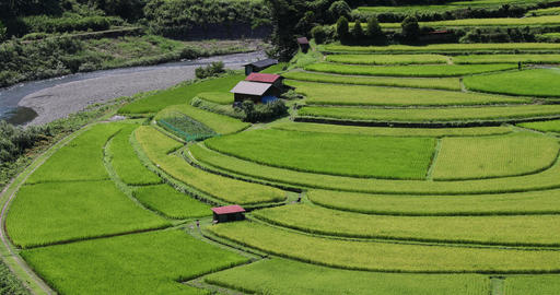 As for the 'aragijima (terraced paddy field) in Wakayama,' which was selected as Footage