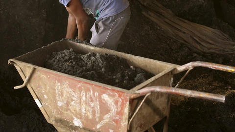 The Worker Loads a cement or stone in the Wheelbarrow Live Action
