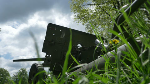 Cannon in the Grass Footage
