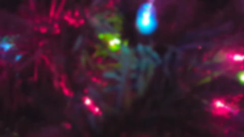 Christmas Tree Up-Close With Blur Effect Footage