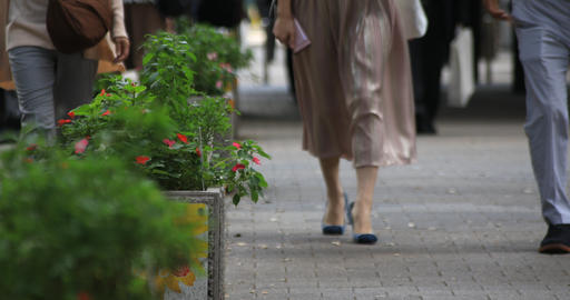 Walking people near the plant at West Shinjuku low angle front shallow focus Footage