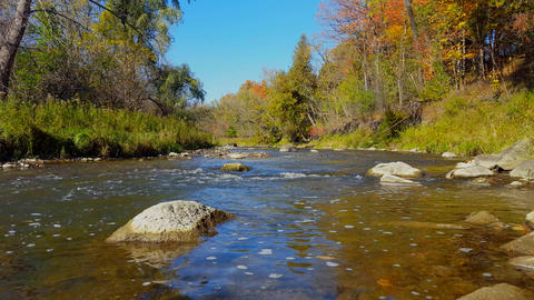 Flowing River in Autumn in North America Footage