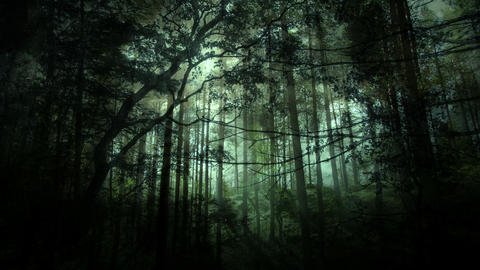Magical Forest Backgrounds 1