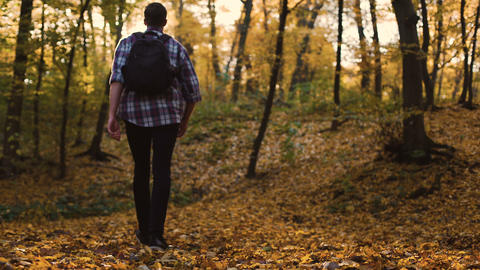 Guy going into autumn deciduous forest to be alone and admire nature, solitude Footage