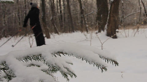 In the winter city park. Ski ramble GIF