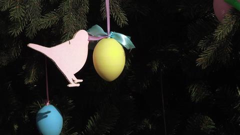 Decorative eggs for festive decoration Live Action