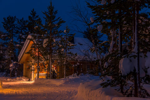 Lighted Cottage in the Snowy Night Forest Photo