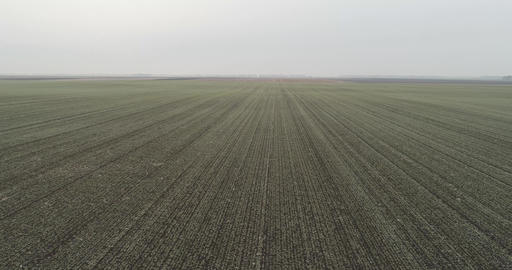 Winter Field AERIALS
