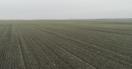 Winter Field AERIALS 0