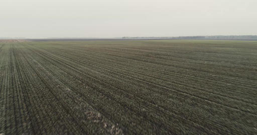 Winter Field AERIALS 1