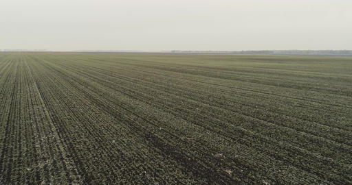 Winter Field AERIALS 2
