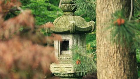 pagoda Footage