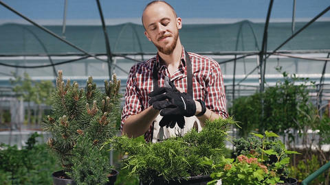 A cheerful man wearing gloves in an apron with garden tools. The gardener Live Action