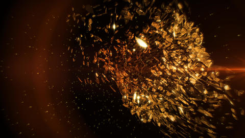 Golden Petals in Vortex Background 1 Animation