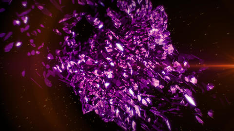 Purple Petals in Vortex Background 2 CG動画素材