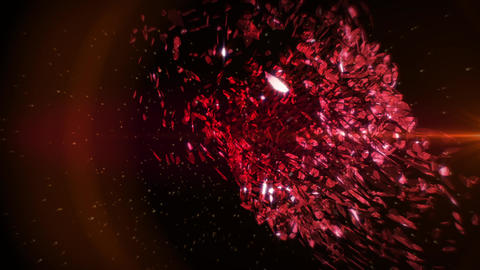 Red Petals in Vortex Background 1 Animation