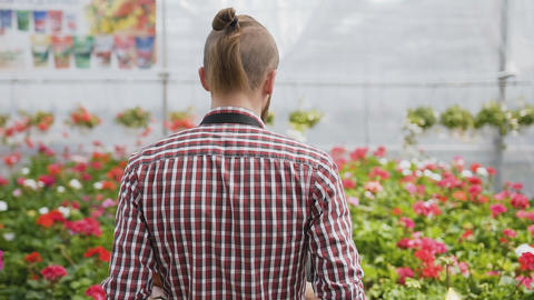 The young gardener goes to a flower shop and sets flowers Stock Video Footage