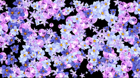 4K FLORAL ROMANTIC BACKGROUND Live Action