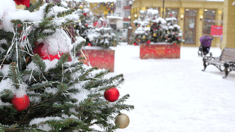 Christmas tree covered with snow, it is decorated with balls and toys. On the Live Action