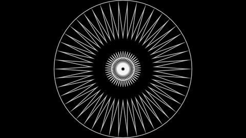 Concentric Circle 03 Animation
